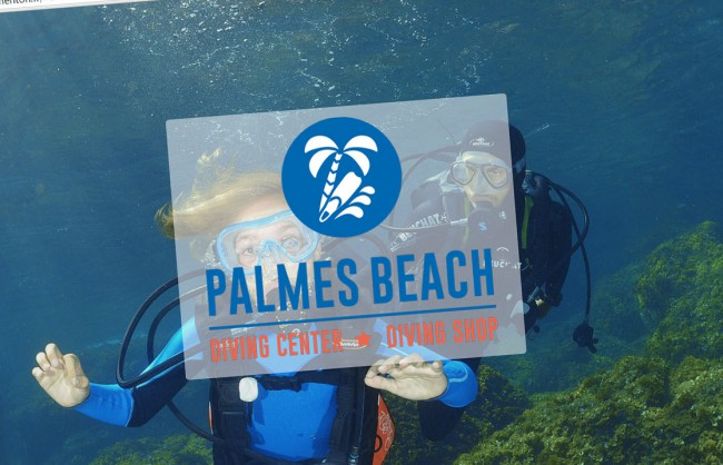 palmes-beach